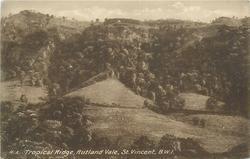 TROPICAL RIDGE, RUTLAND VALE