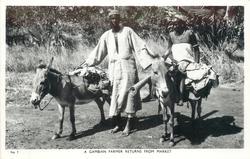 A GAMBIAN FARMER RETURNS FROM MARKET