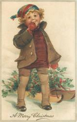 A MERRY CHRISTMAS  boy with sled loaded with holly