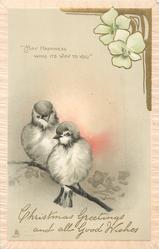 "CHRISTMAS GREETINGS AND ALL GOOD WISHES ""MAY HAPPINESS WING ITS WAY TO YOU""  two birds on branch"