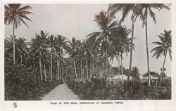 VIEW IN THE GAOL COMPOUND AT SAMARI, PAPUA