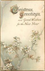 CHRISTMAS GREETINGS AND GOOD WISHES FOR THE NEW YEAR above blossom tree