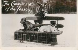 THE COMPLIMENTS OF THE SEASON  donkey stands behind two dogs sitting on bench