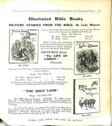 ILLUSTRATED BIBLE BOOKS