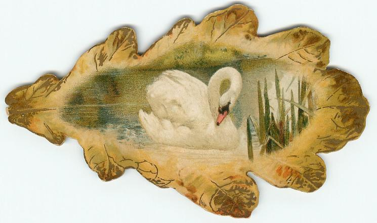 oak leaf with swan inset