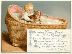 baby and cat in bassinet