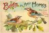 BIRDS IN THEIR HOMES