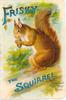 FRISKY THE SQUIRREL