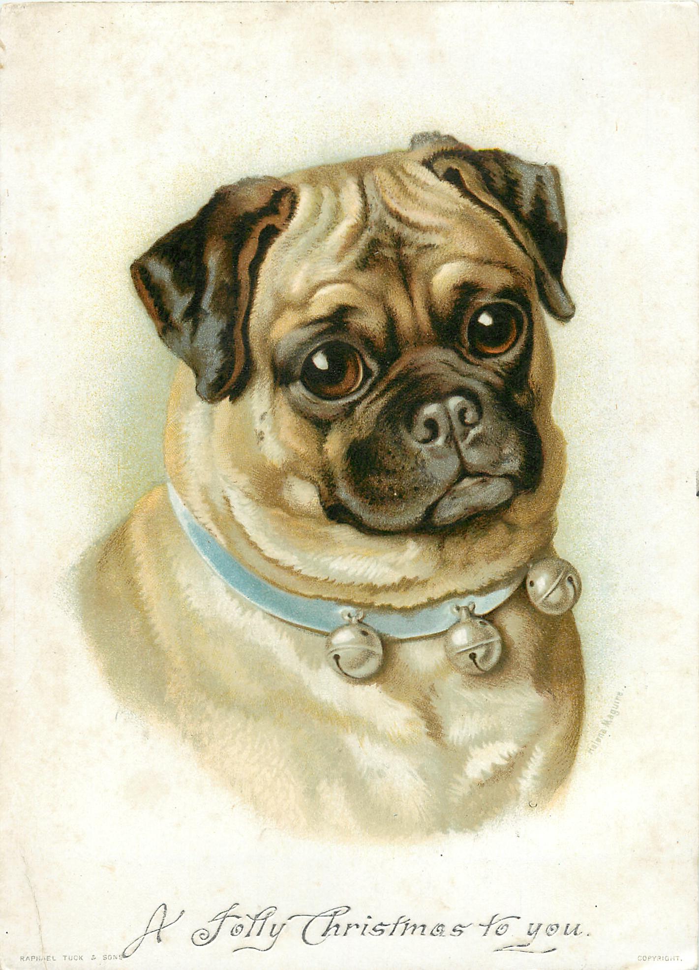 Small Dog Portrait Tattoo