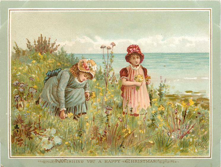 two girls picking wildflowers on cliff edge at seaside