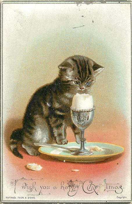 brown striped cat with opened egg in an eggcup on a plate