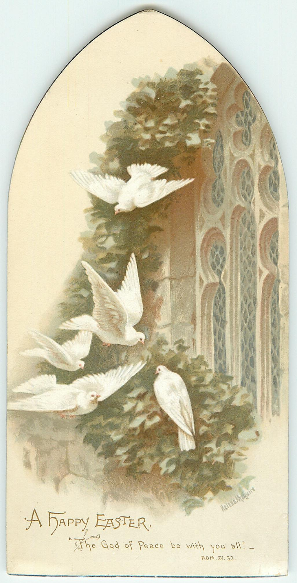 doves with ivy on outside church window ledge