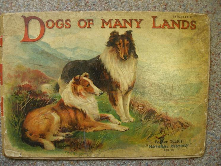 DOGS OF MANY LANDS