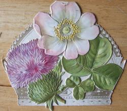 thistle (BALMORAL on back), rose(WINDSOR on back)and clover(VICE-REGAL LODGE DUBLIN (on back) fold out to reveal crown shaped card