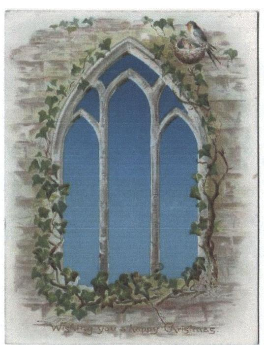 ivy clad gothic arch window with swallows nest with young