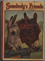 SOMEBODY'S FRIENDS two donkeys tied at wooden rail
