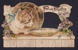 FUR AND FEATHER CALENDAR FOR 1902 cat crouching by bowl