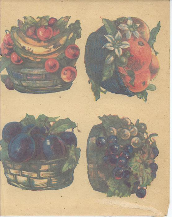 FRUITS OF MANY LANDS