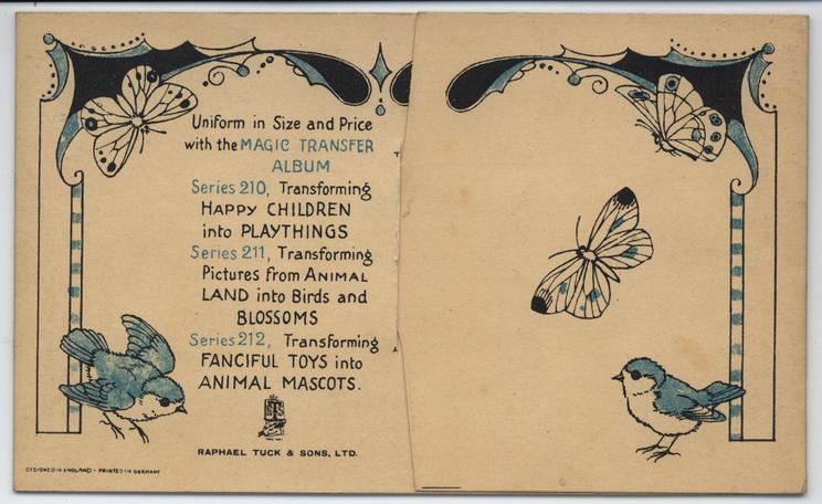 TRANSFORMING BIRDS INTO BUTTERFLIES