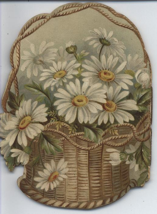 THE DAISY BASKET