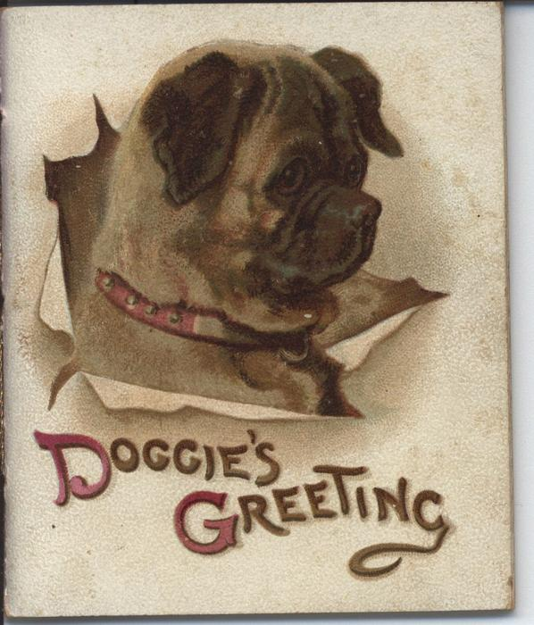 DOGGIE'S GREETING