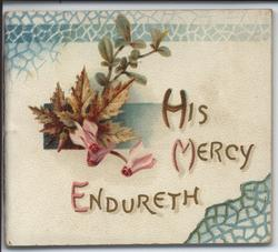 HIS MERCY ENDURETH