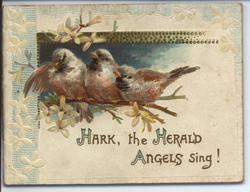 HARK, THE HERALD ANGELS SING!