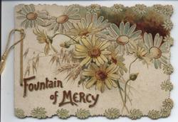 FOUNTAIN OF MERCY