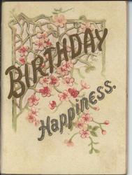 BIRTHDAY HAPPINESS