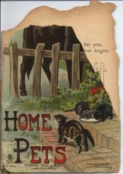 HOME PETS