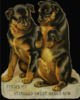 two black and tan dogs sitting