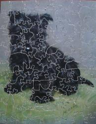 A WINNER OF HEARTS, black Scotch terrier type dog sitting