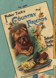 FATHER TUCK'S COUNTRY FRIENDS POSTCARD PAINTING BOOK