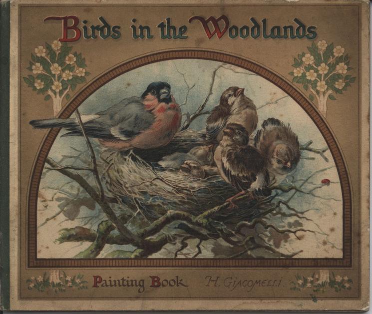 BIRDS IN THE WOODLANDS