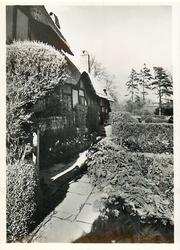THE COTTAGE PATHWAY