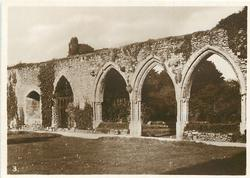 CHAPTER HOUSE ARCHES