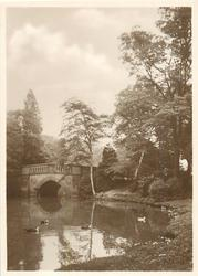 THE OLD BRIDGE CANNON HILL PARK