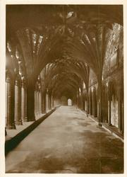 NORTH ALLEY OF THE CLOISTERS