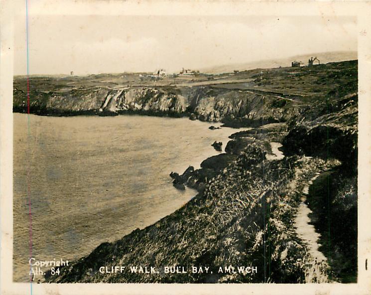 CLIFF WALK, BULL BAT, AMLWCH