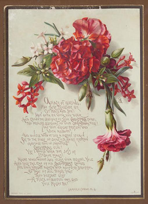 red flowers hanging downwards around phrase