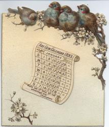 ART GEM CALENDAR 1893