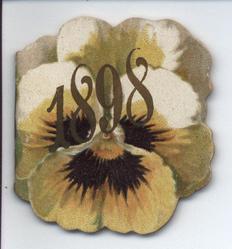 1898 yellow pansy
