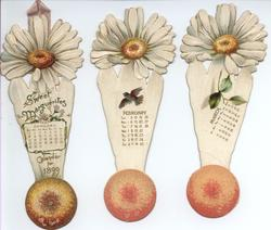 SWEET MARGUERITES CALENDAR FOR 1899