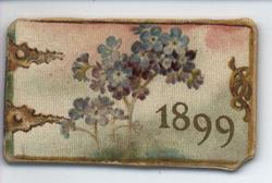 1899 purple and blue flowers