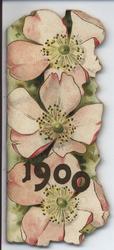 1900 three open flowers