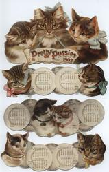 PRETTY PUSSIES CALENDAR FOR 1902
