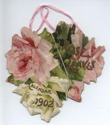 ROSE LEAVES CALENDAR FOR 1902