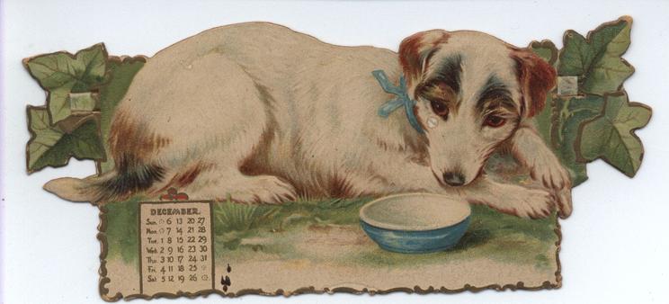 JOLLY DOGS CALENDAR FOR 1903