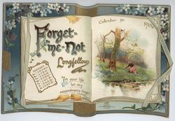 FORGET-ME-NOT CALENDAR FOR 1904