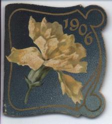 1906 white flower